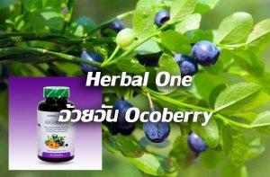 Herbal One อ้วยอัน Ocoberry